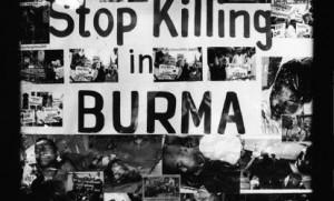 Stop killing Muslims